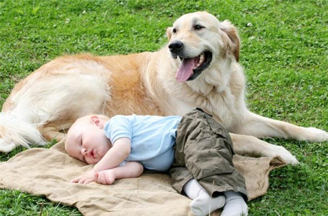 Để kiêng kỵ tốt nên mang theo trẻ nhỏ hoặc một chú chó vào nhà mới